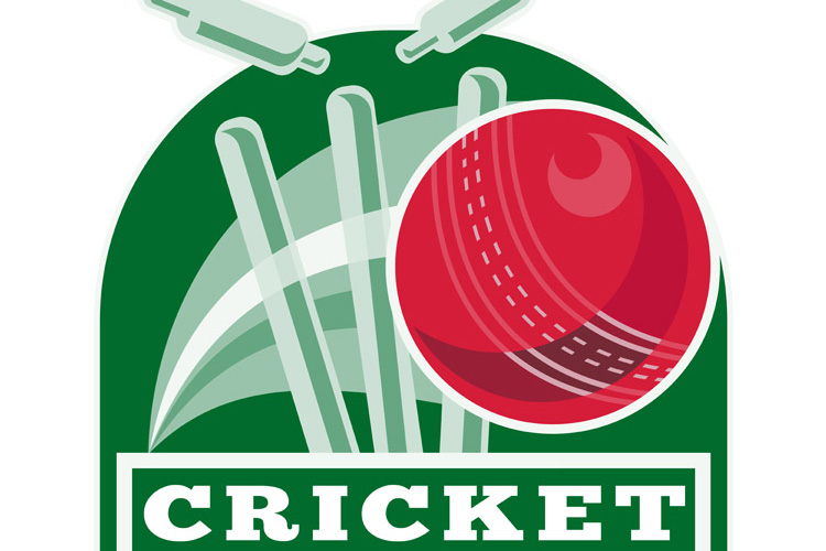 cricket sports ball wicket example image 1