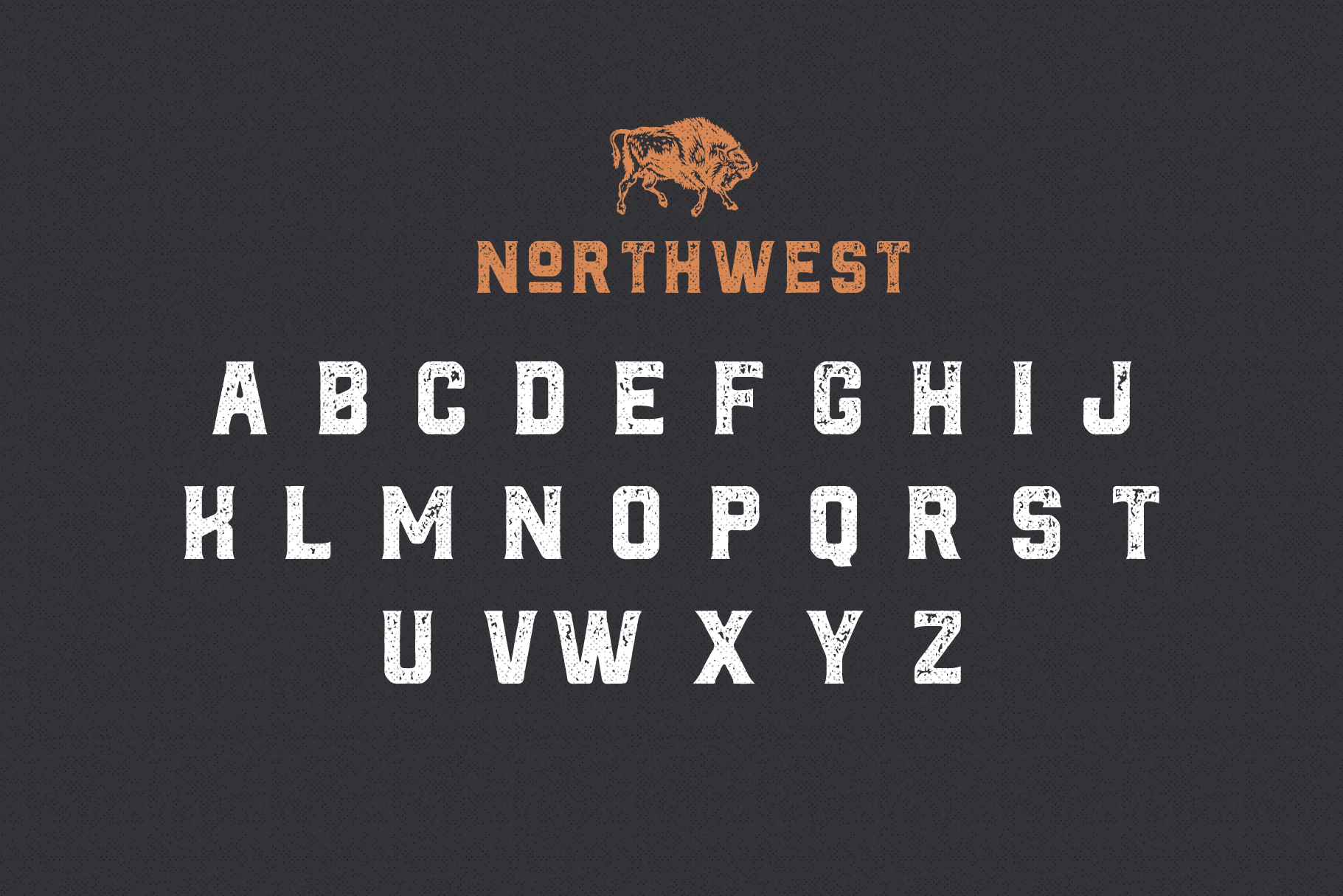 The Northwest - Textured Vintage Type Family example image 4