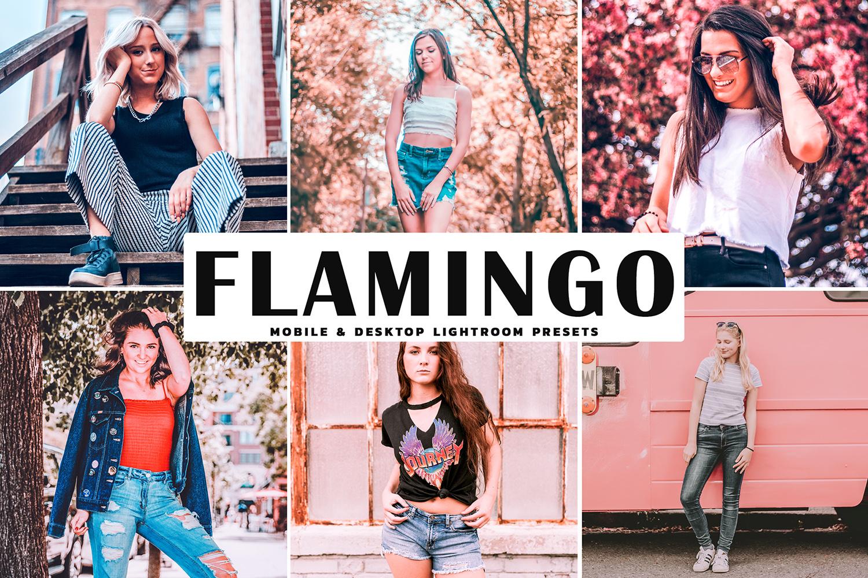 Flamingo Mobile & Desktop Lightroom Presets example image 1