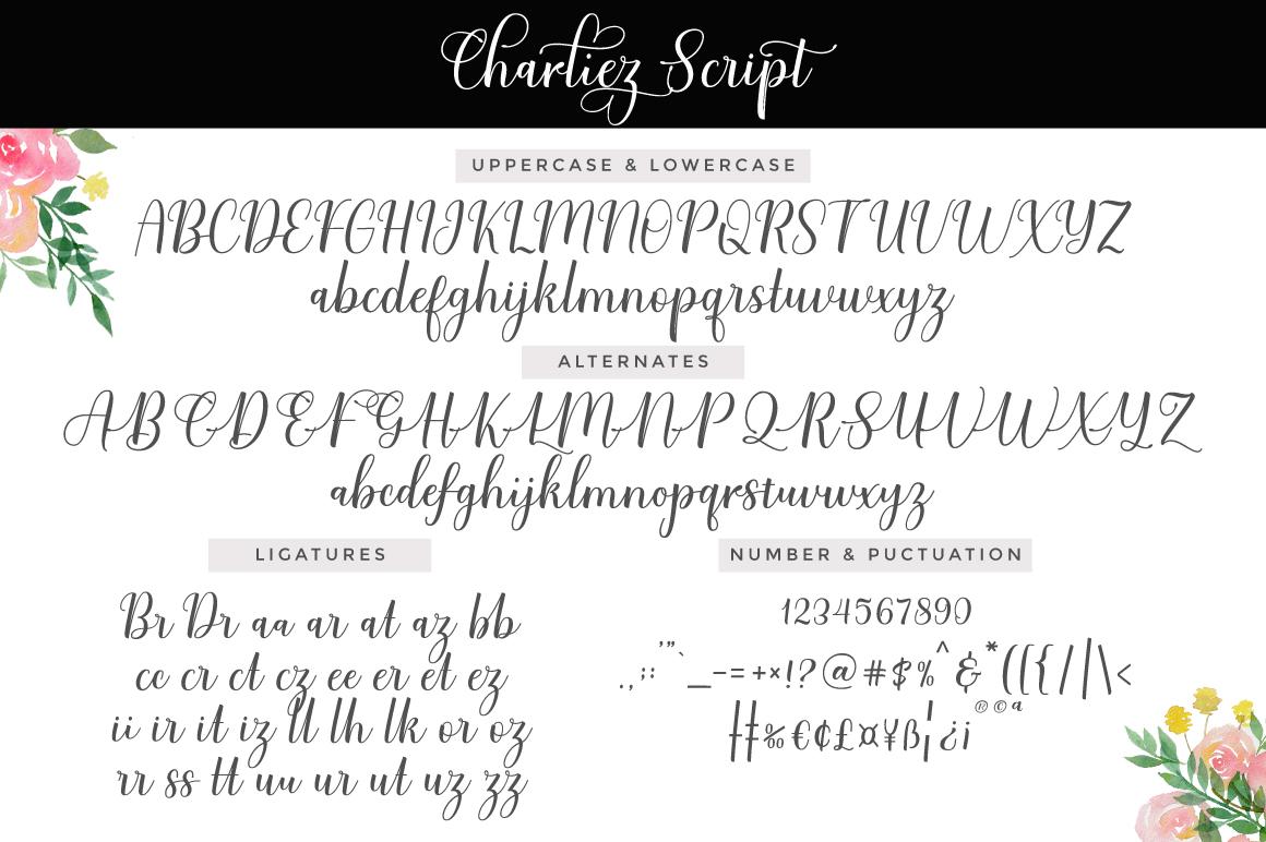Charliez Script example image 9