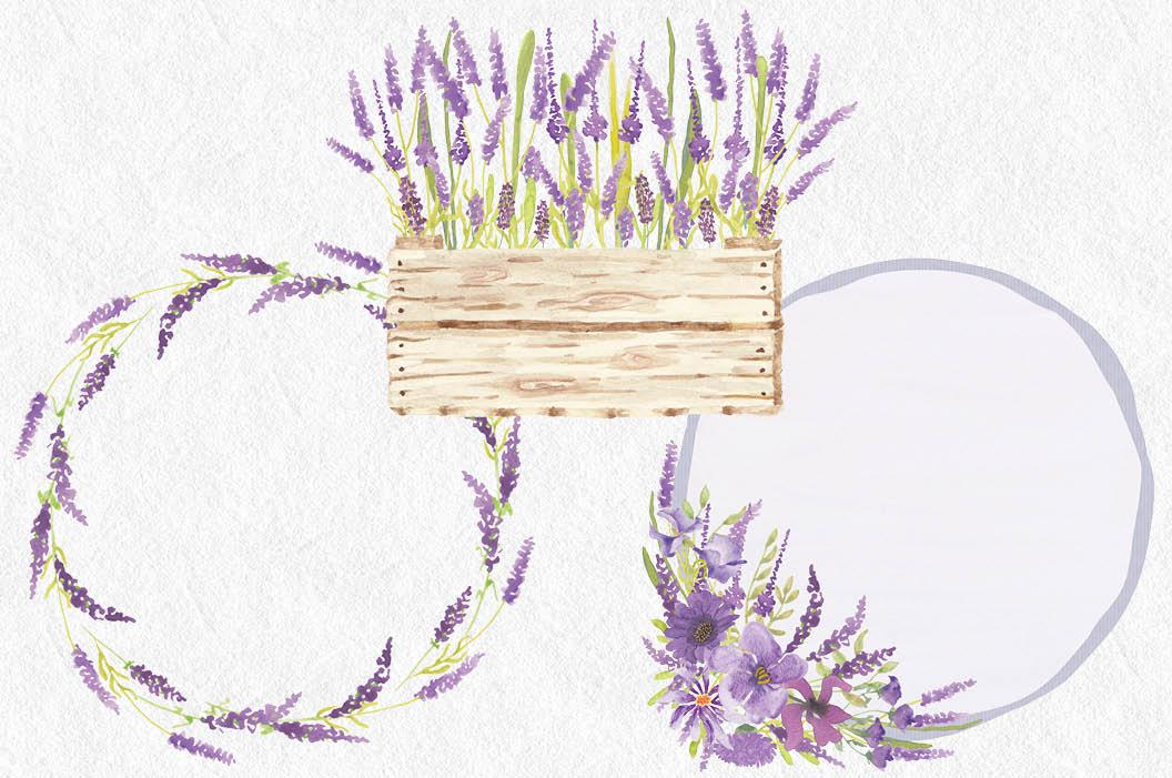 Watercolor clip art bundle in Lavender example image 5