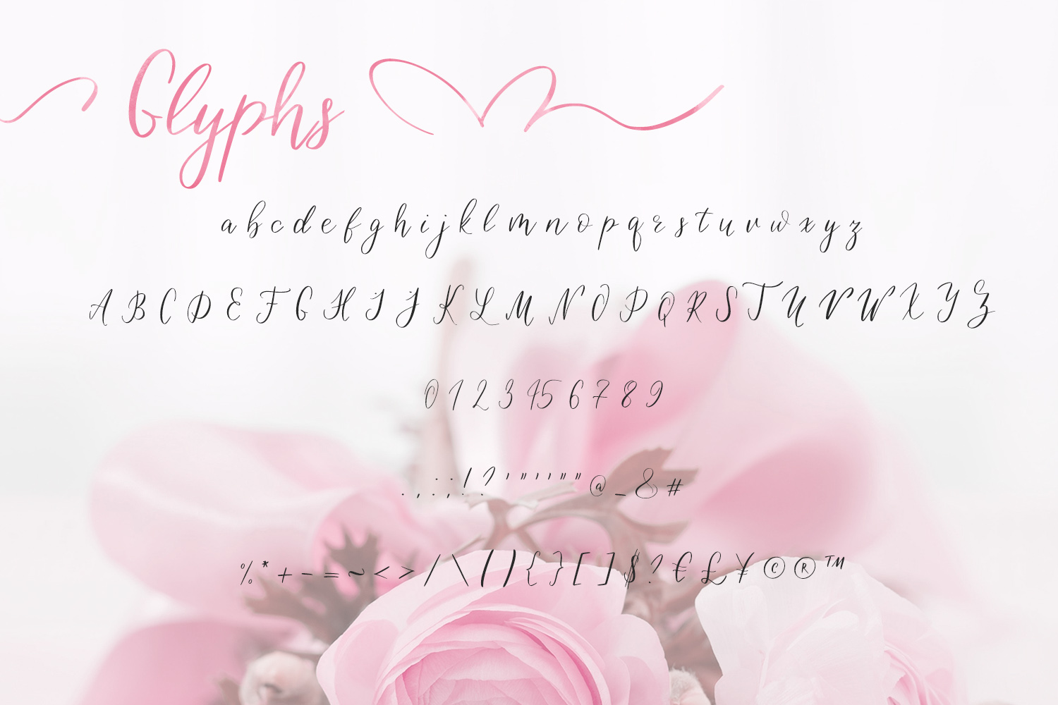 Birdy Roses | Script font and Swashes example image 9