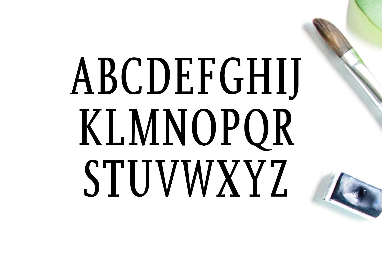 Orrick Slab Serif Font Family example image 2