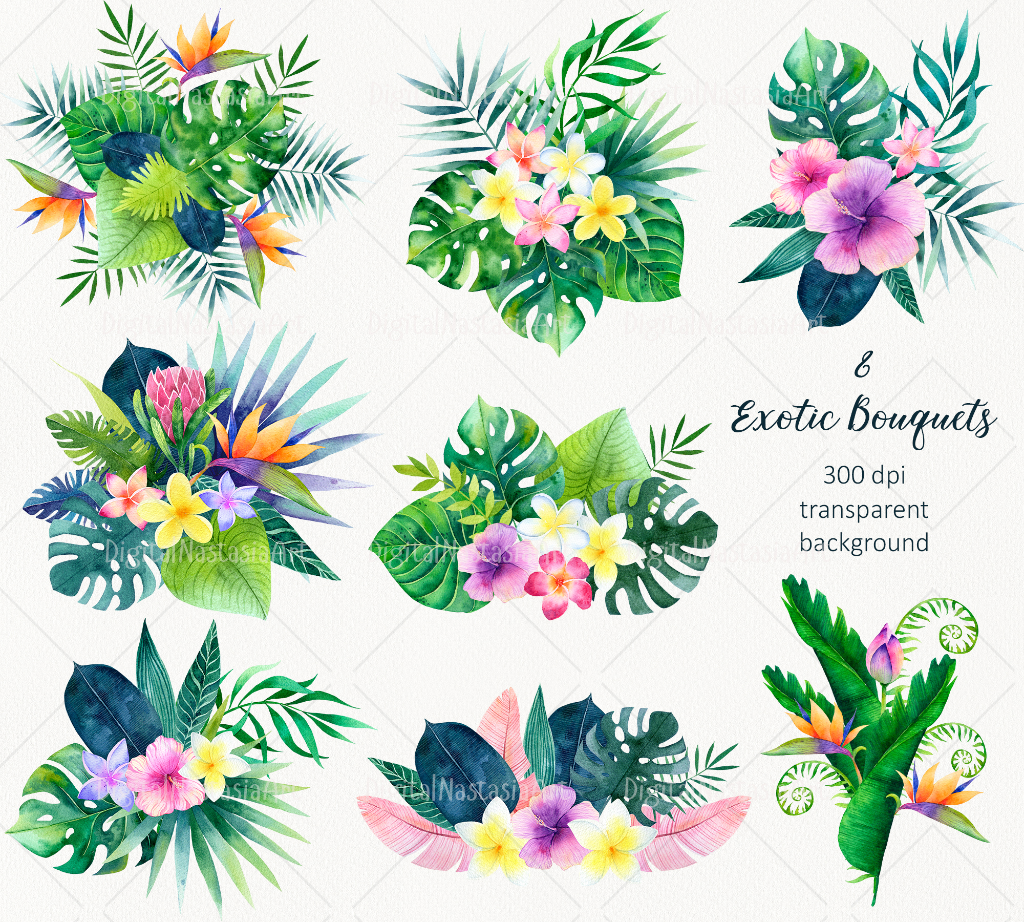 Hawaii Watercolor Bouquets. Tropical Flowers (293133 ...