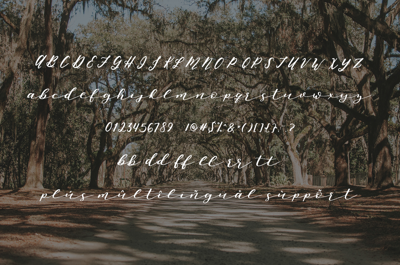 Oh, Savannah! Script example image 3