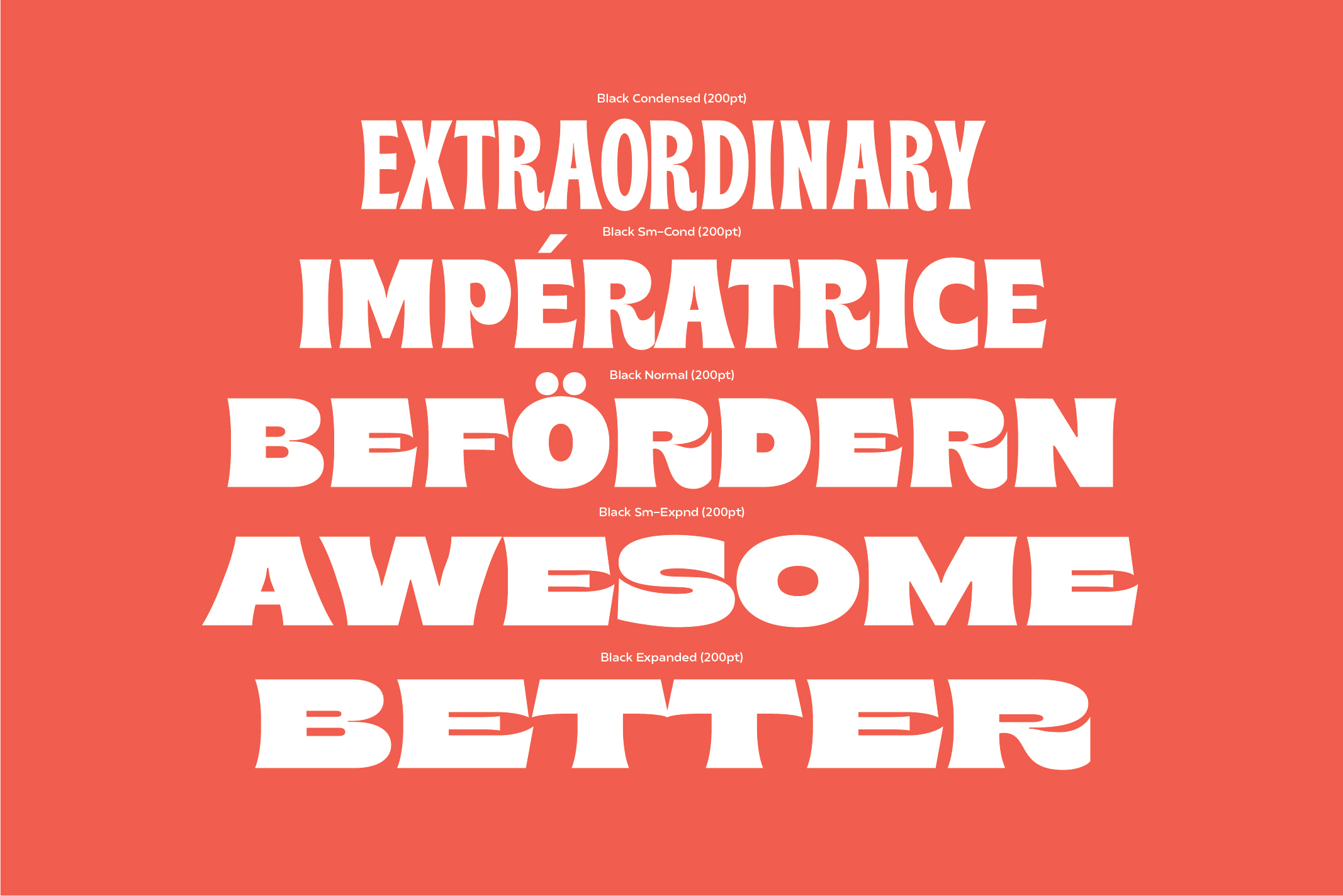 Brice Font Family example image 8