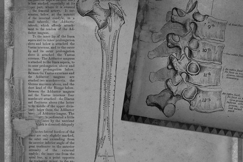 Dark Anatomy Digital Paper example image 3