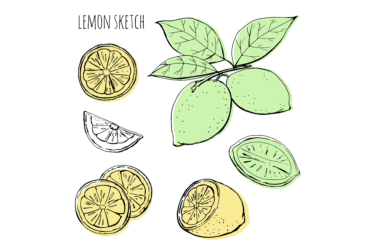 Sketch lemons. Watercolor. Vector. example image 2