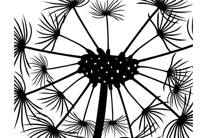 Close up Dandelion SVG vector files