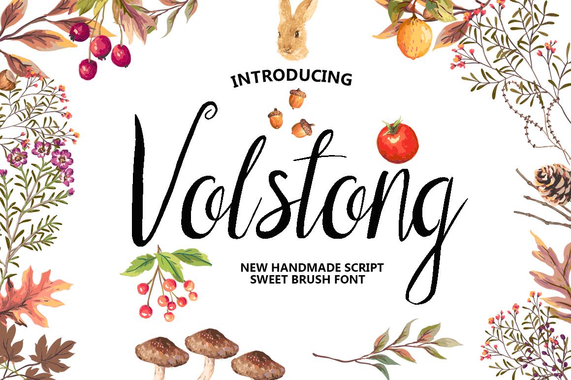 Volstong Script font example image 1
