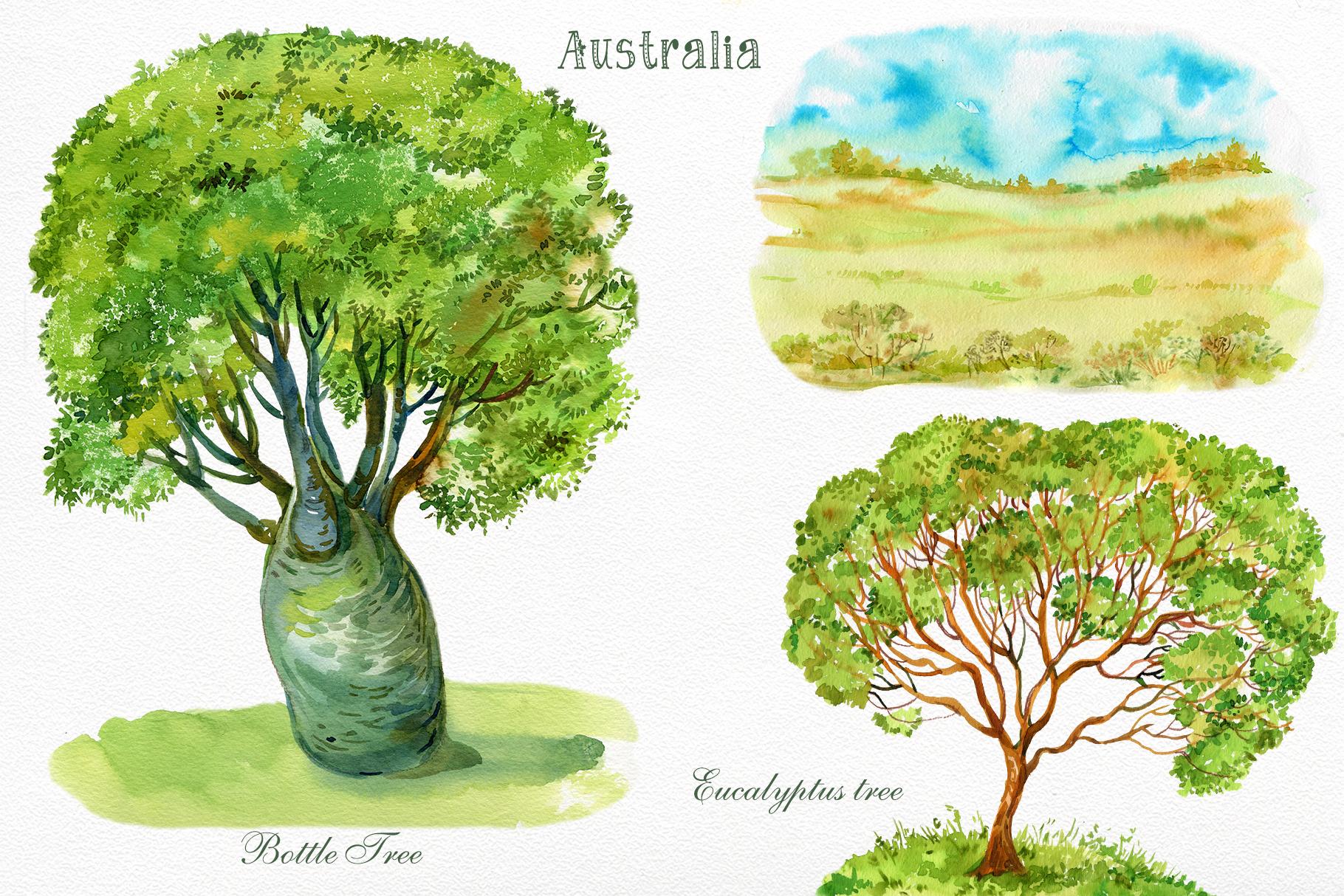Animals Australia Watercolor example image 5