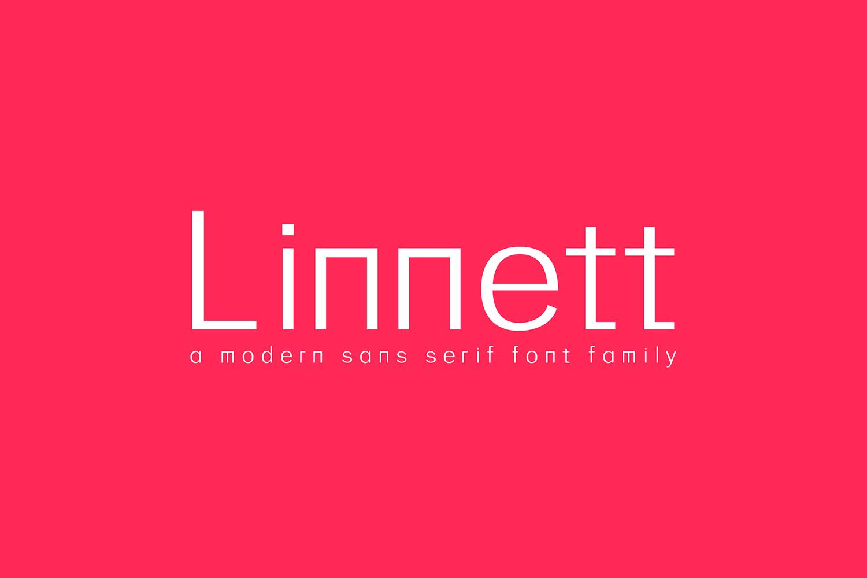 Linnett Sans Serif Font Family example image 1