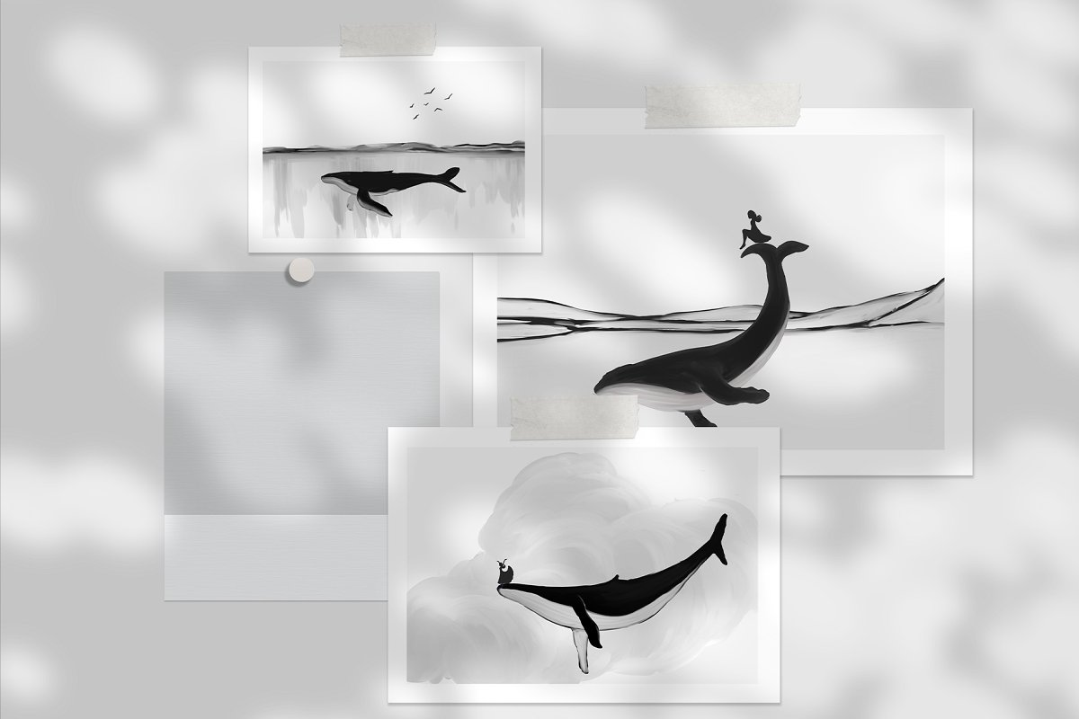 Black&White Whales Illustrations example image 8