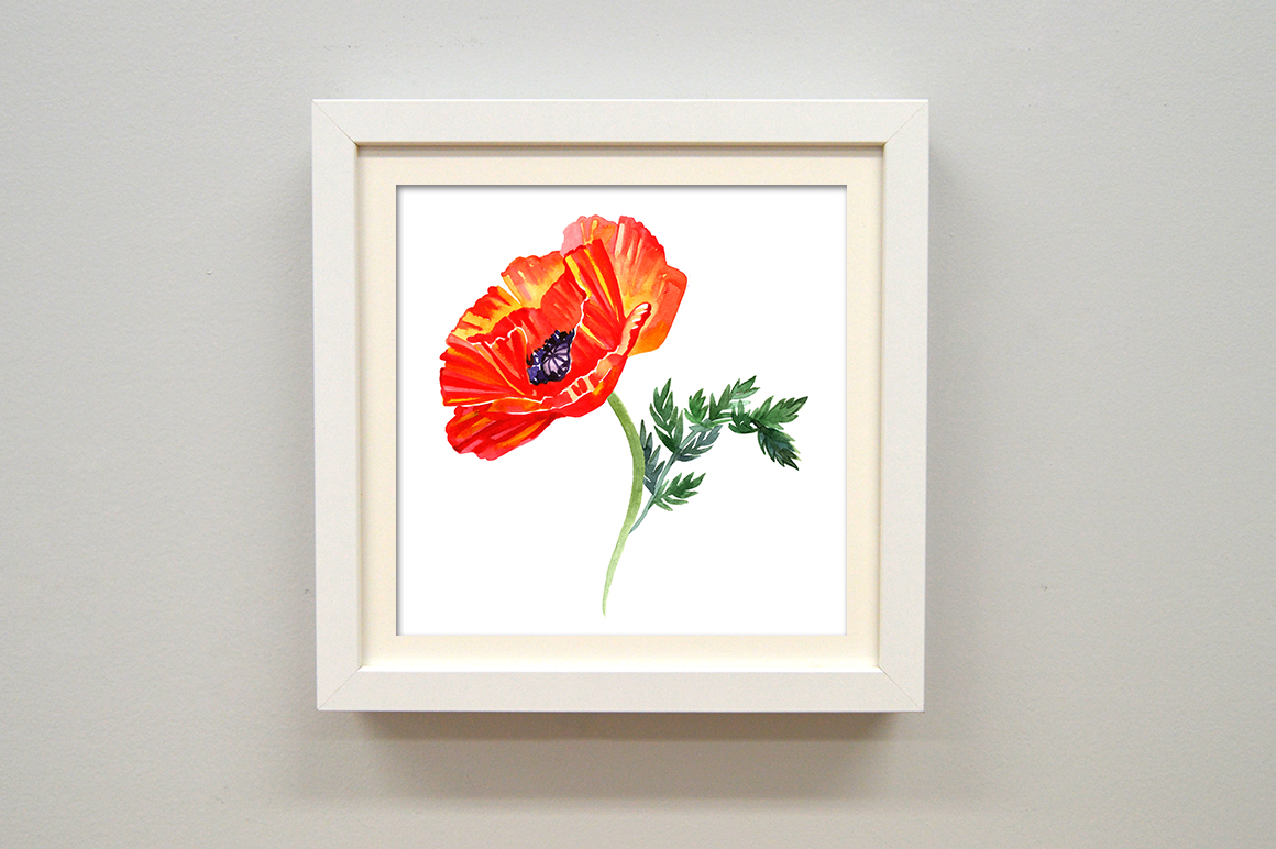 Watercolor poppy - flower set. example image 3