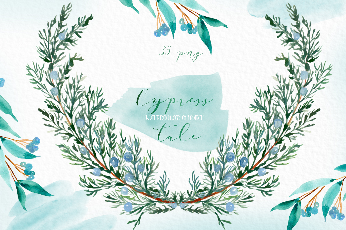Cypress tale. Watercolor clipart. Cypress christmas branches example image 7