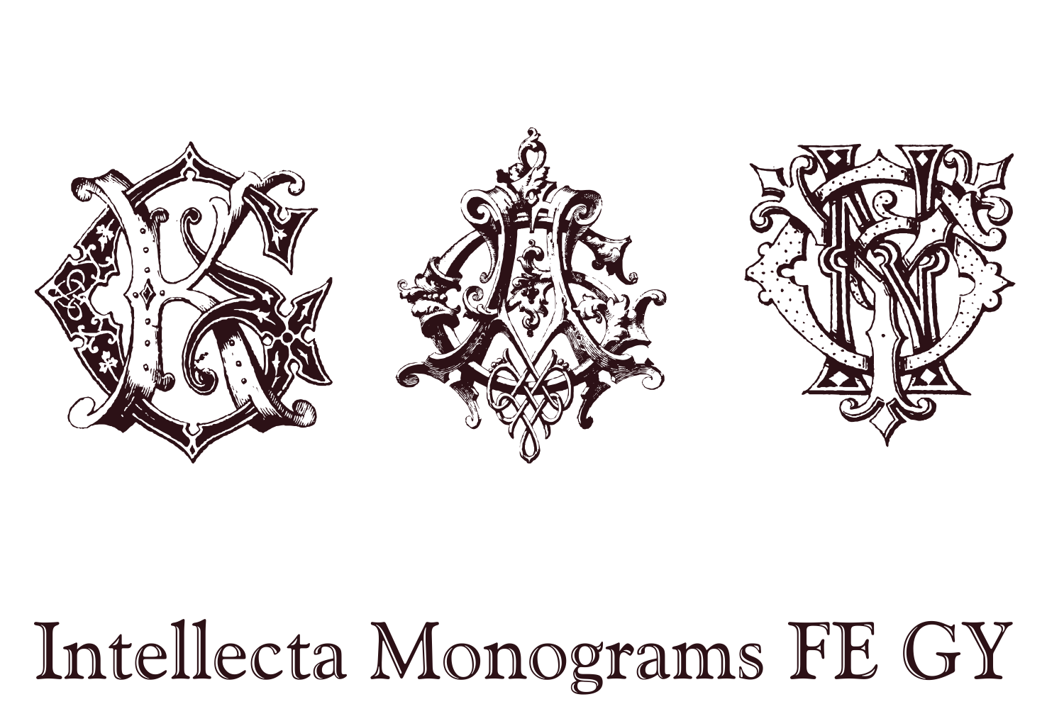 Intellecta Monograms FE GY example image 3