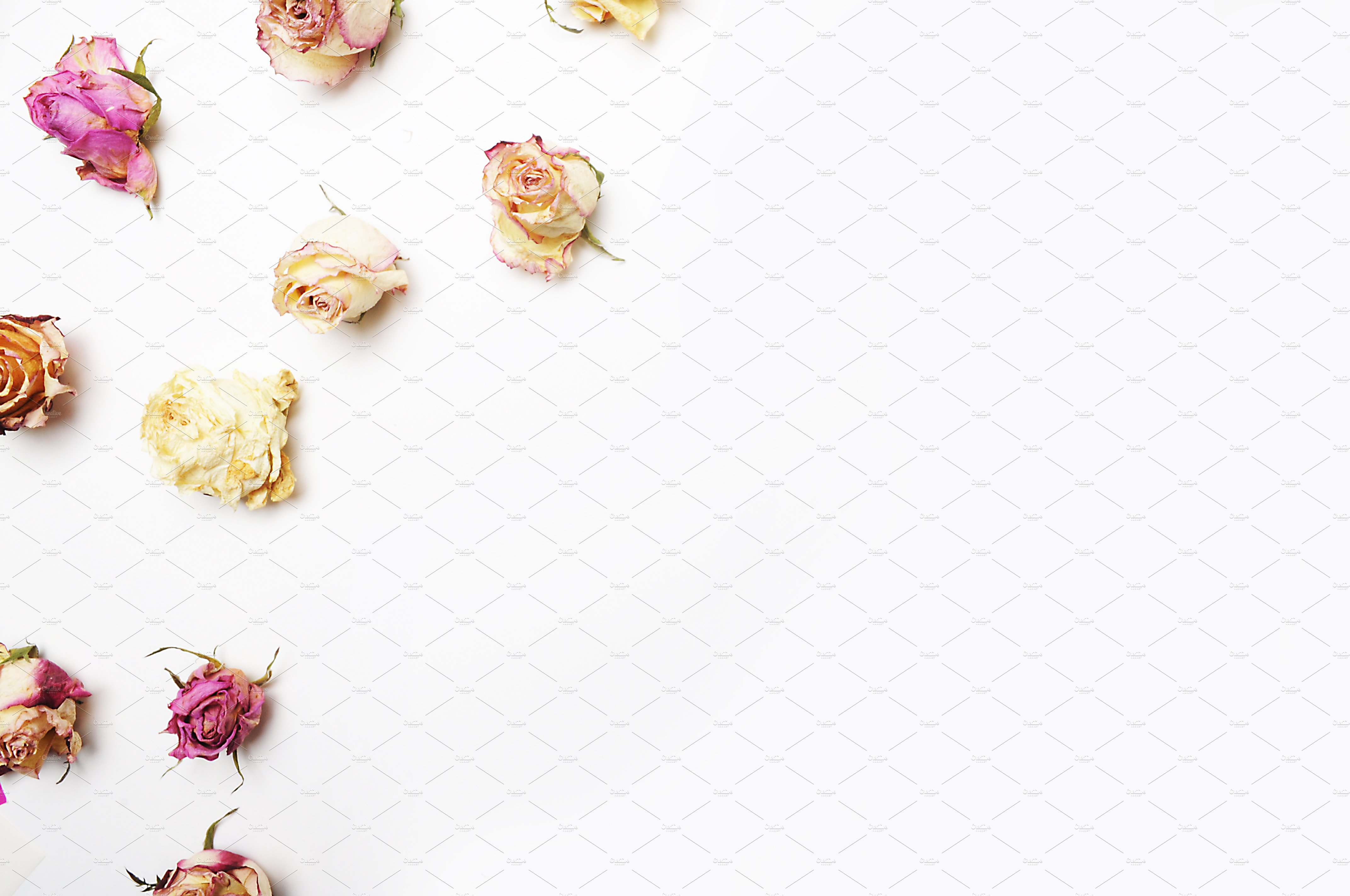 Floral Mockup Pack example image 5