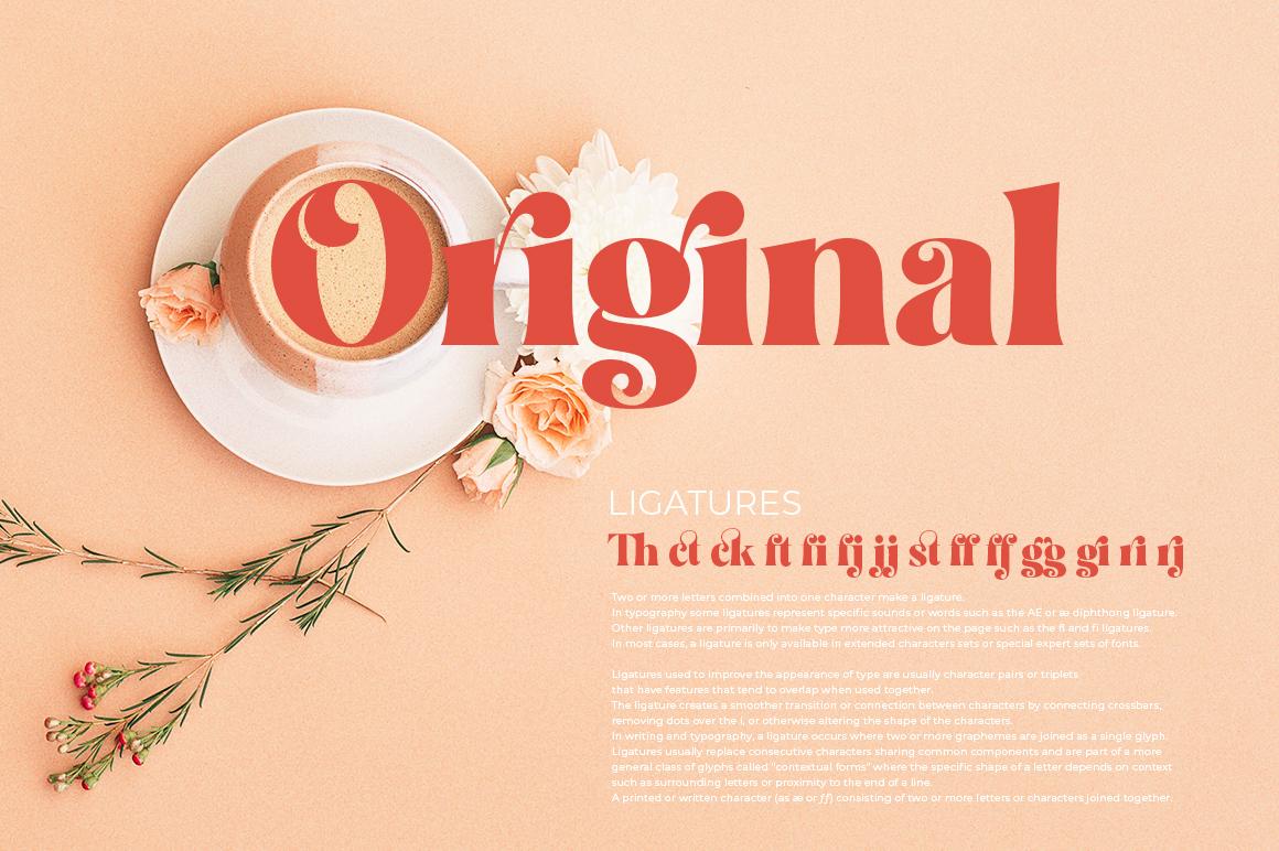 Restgold Serif Font example image 10