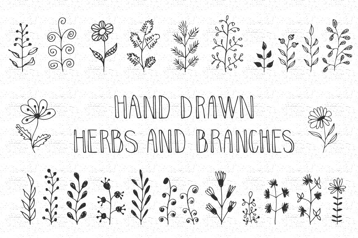 Hand drawn herbs and branches example image 1