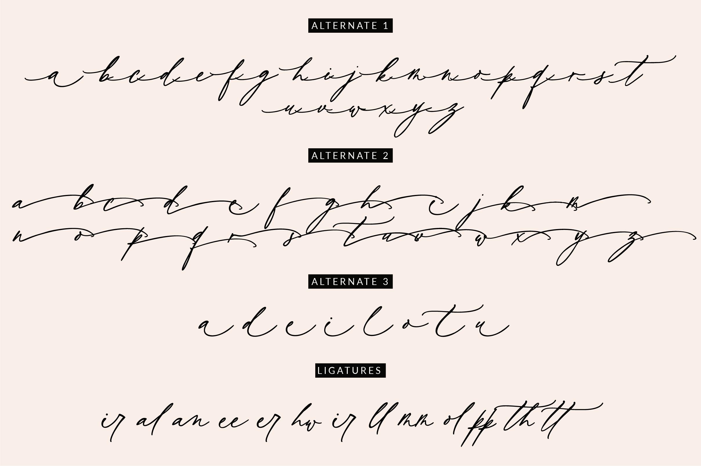 Wild Magnolia Signature Script Font example image 13
