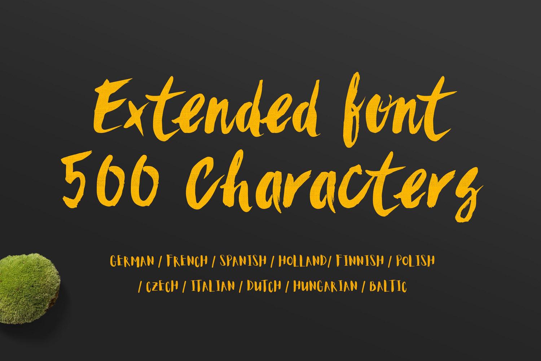 Sanös Extended Script Font example image 3