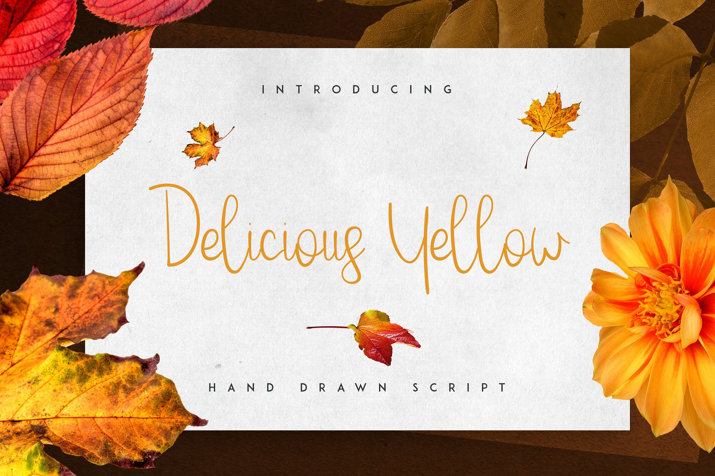 Massive Font Bundle - 197 fonts example image 12