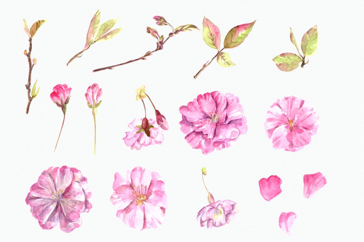 Watercolor Sakura Clip Art Set example image 2