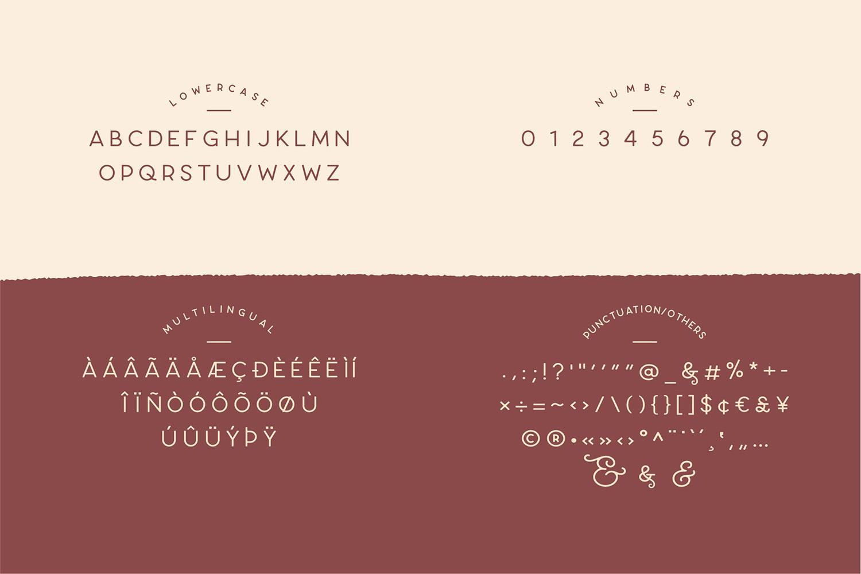 Carose Sans- 6 Elegant Typeface example image 13