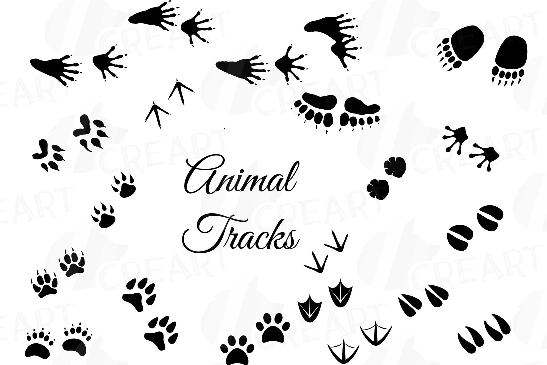 picture relating to Printable Animal Footprints titled Animal Music, Woodland Pets footprints Clipart pack