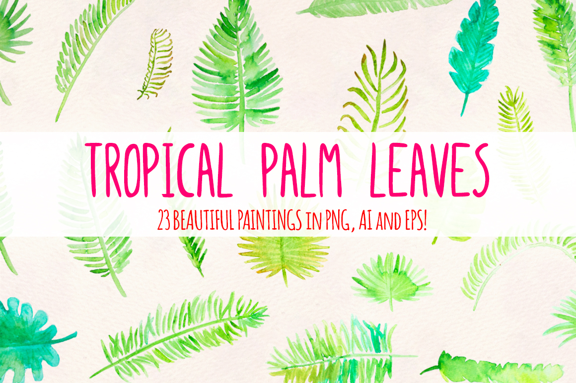 Tropical Palm Leaves 23 Natural Forest Elements example image 2