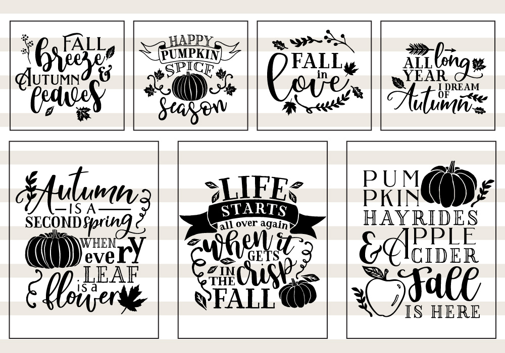 Pumpkin & Fall Quote SVG Cut File Bundle example image 3