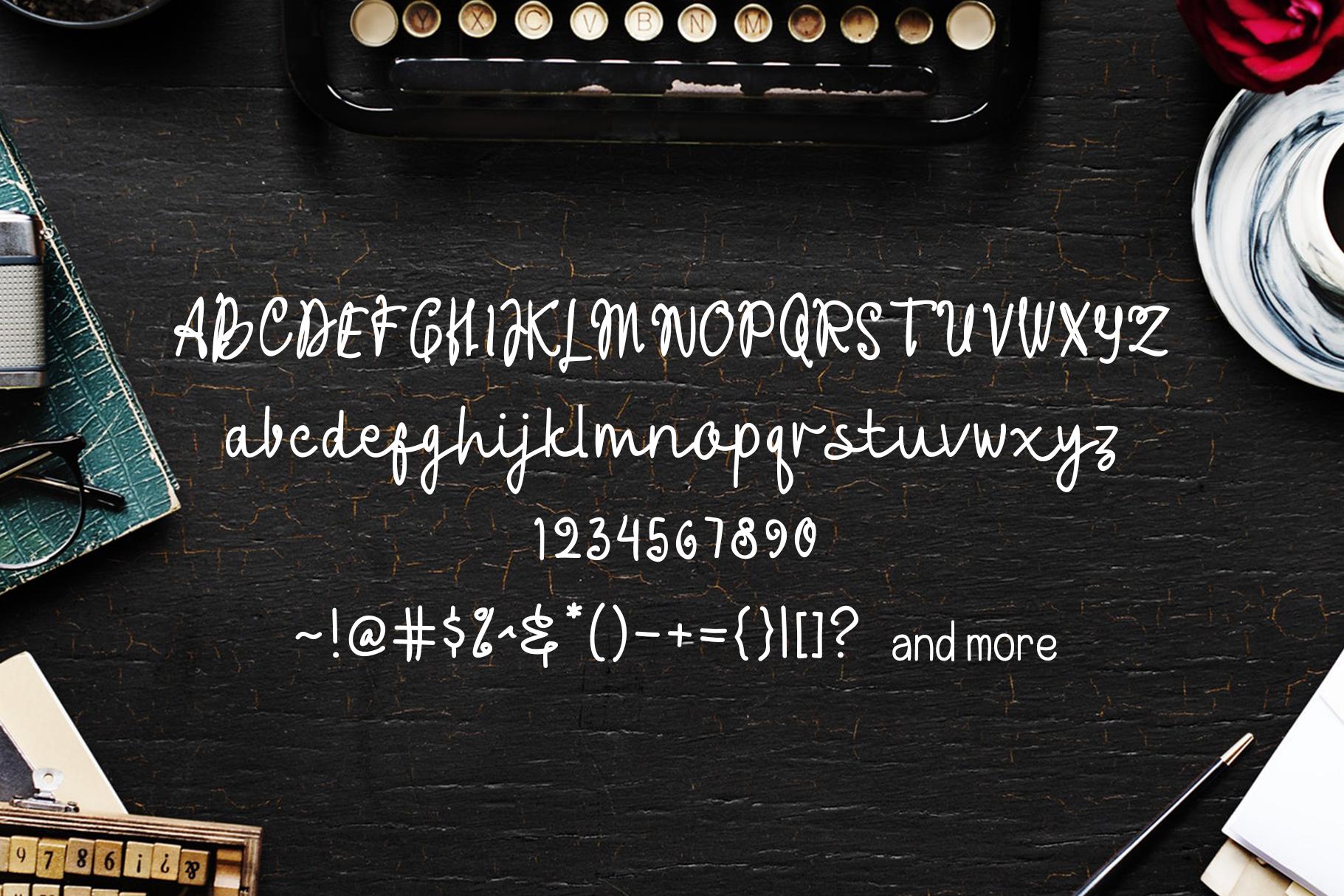 Anitta Script Font example image 2
