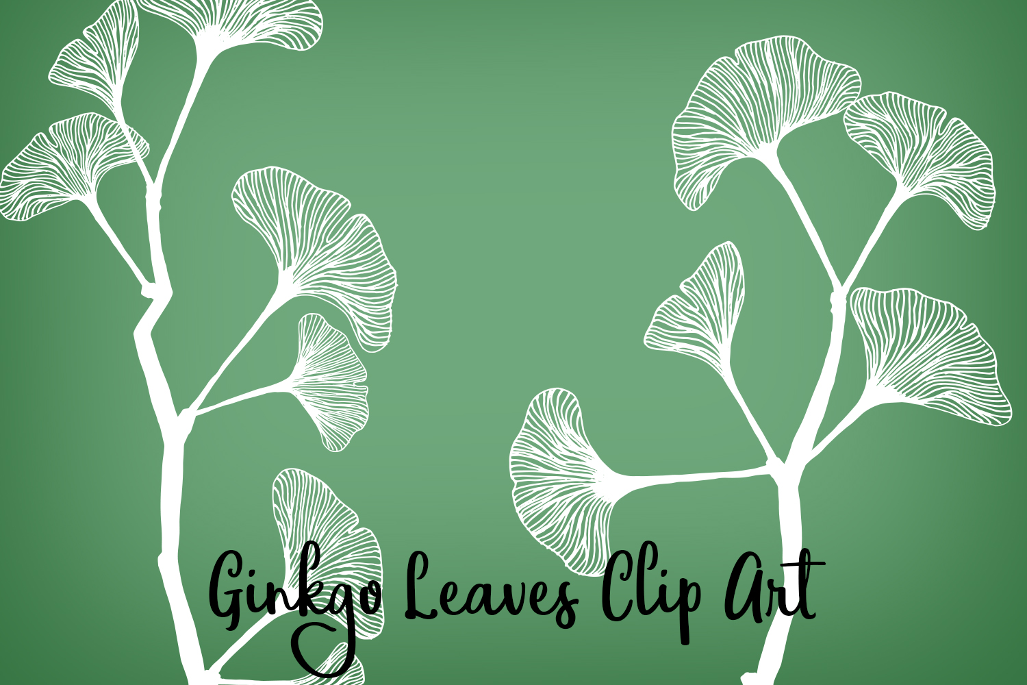 Ginkgo Leaves Clip Art, Vectors, PNGs and Digital Brushes example image 1