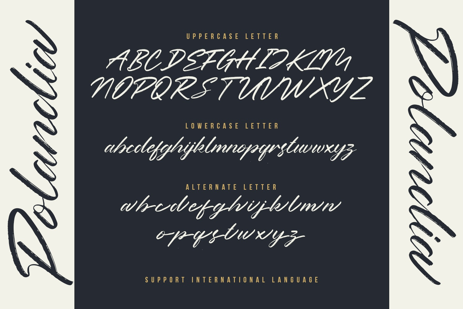 Polandia - The Handbrushed Font example image 7