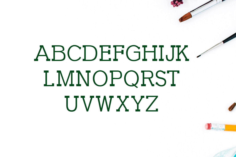 Garvin Slab Serif Font Family example image 2