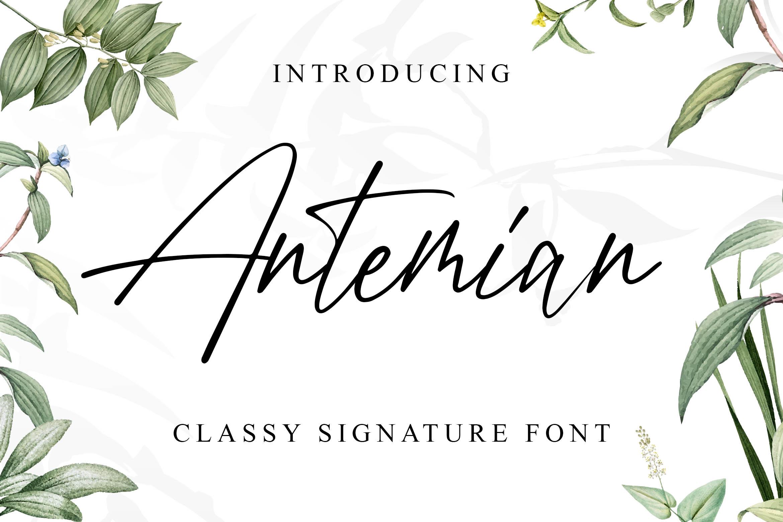 Antemian Classy Signature Font example image 1