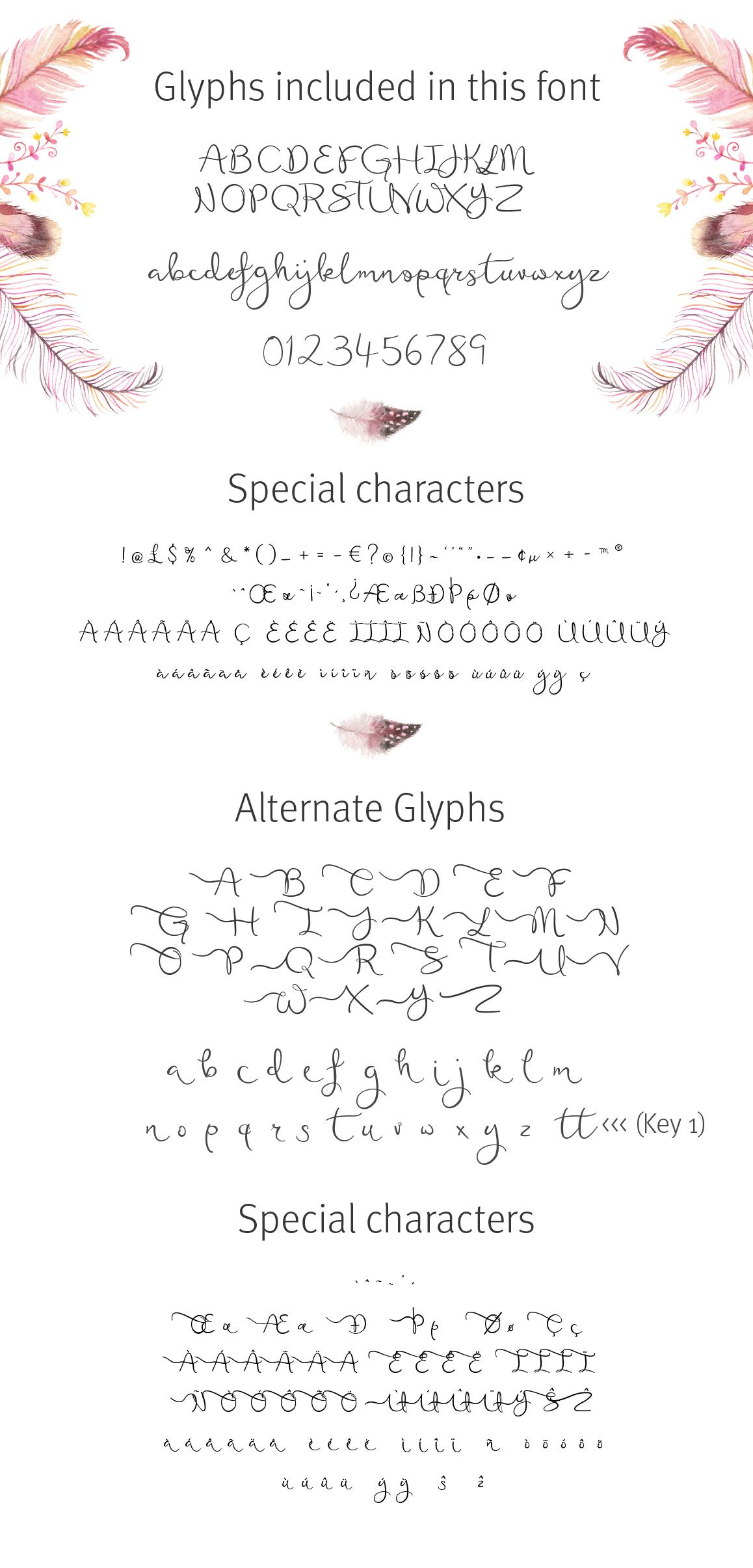 Featherly Bold Font - wedding font example image 3