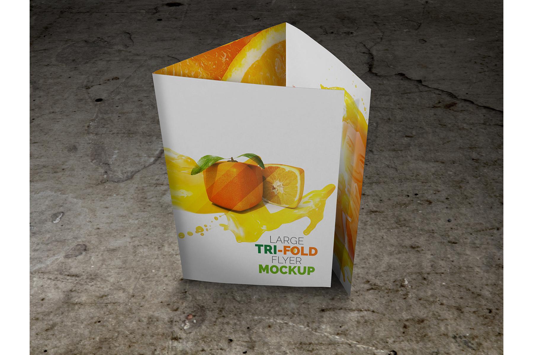Large Trifold Brochure Mockup example image 8