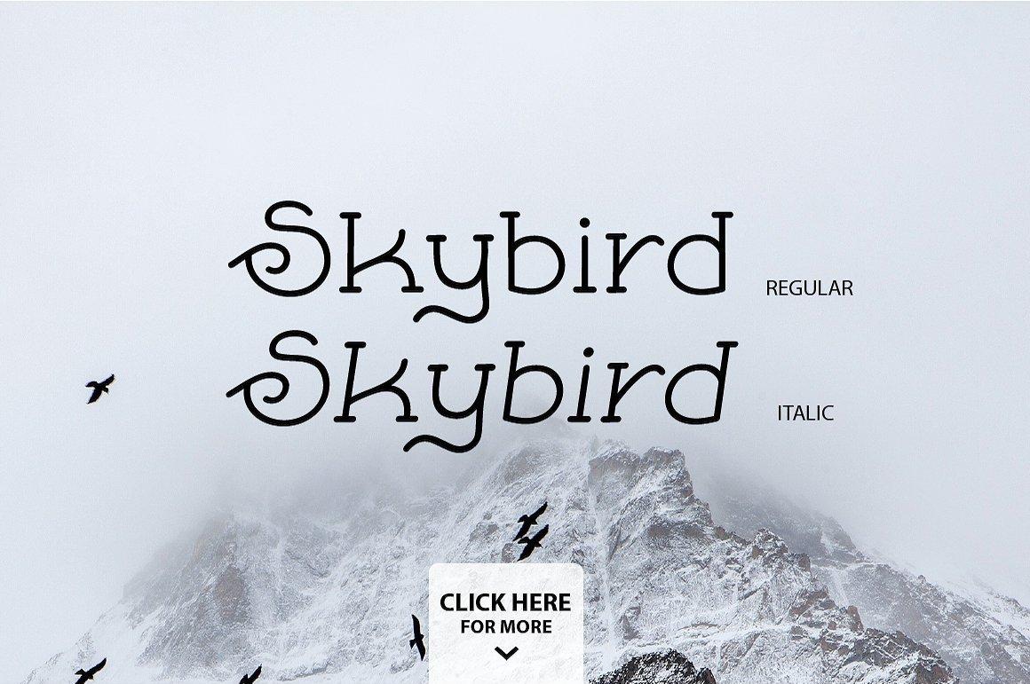 Skybird Family - Crazy, unique & retro example image 3