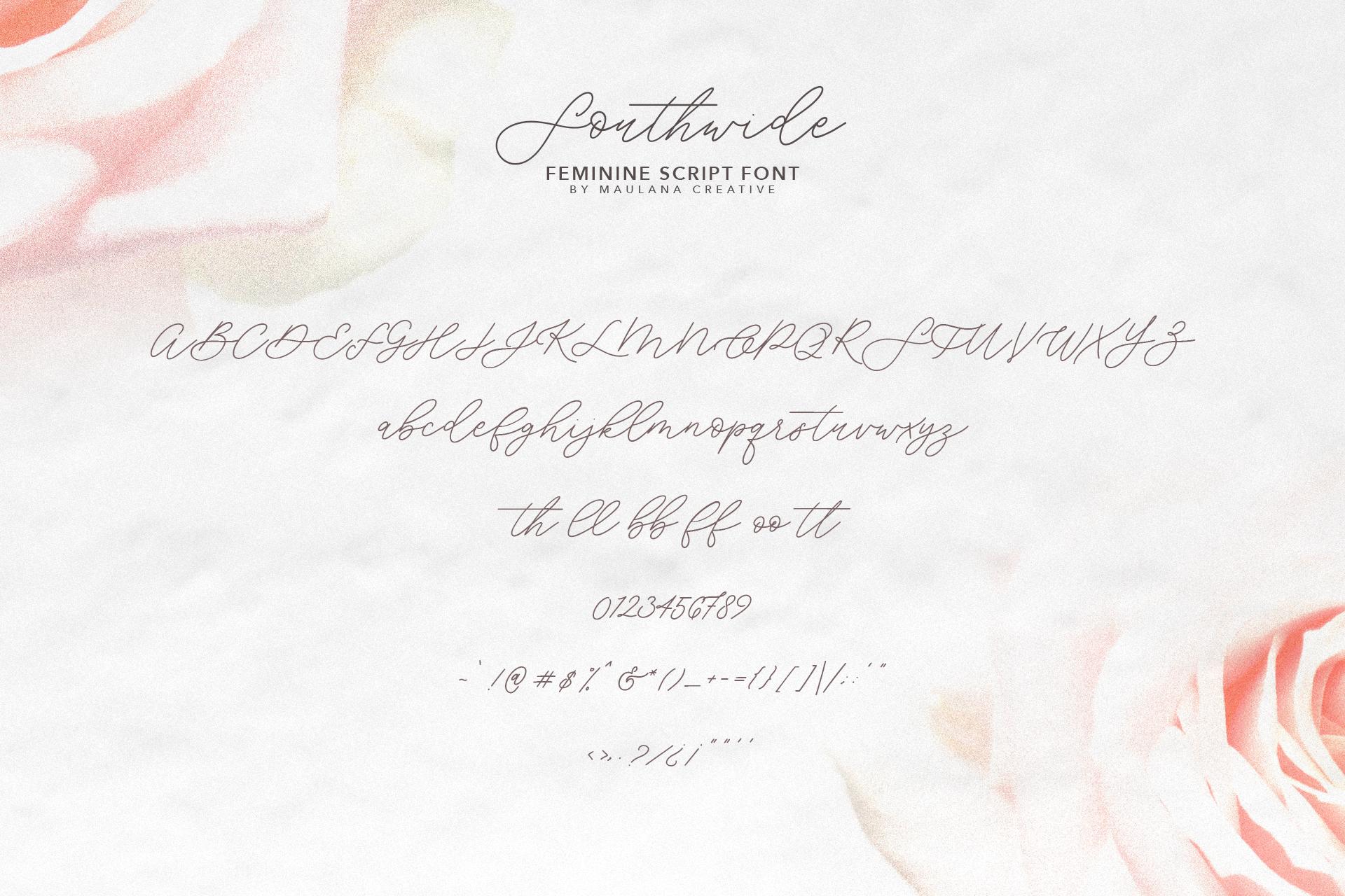 Southwide Feminine Script Font example image 10