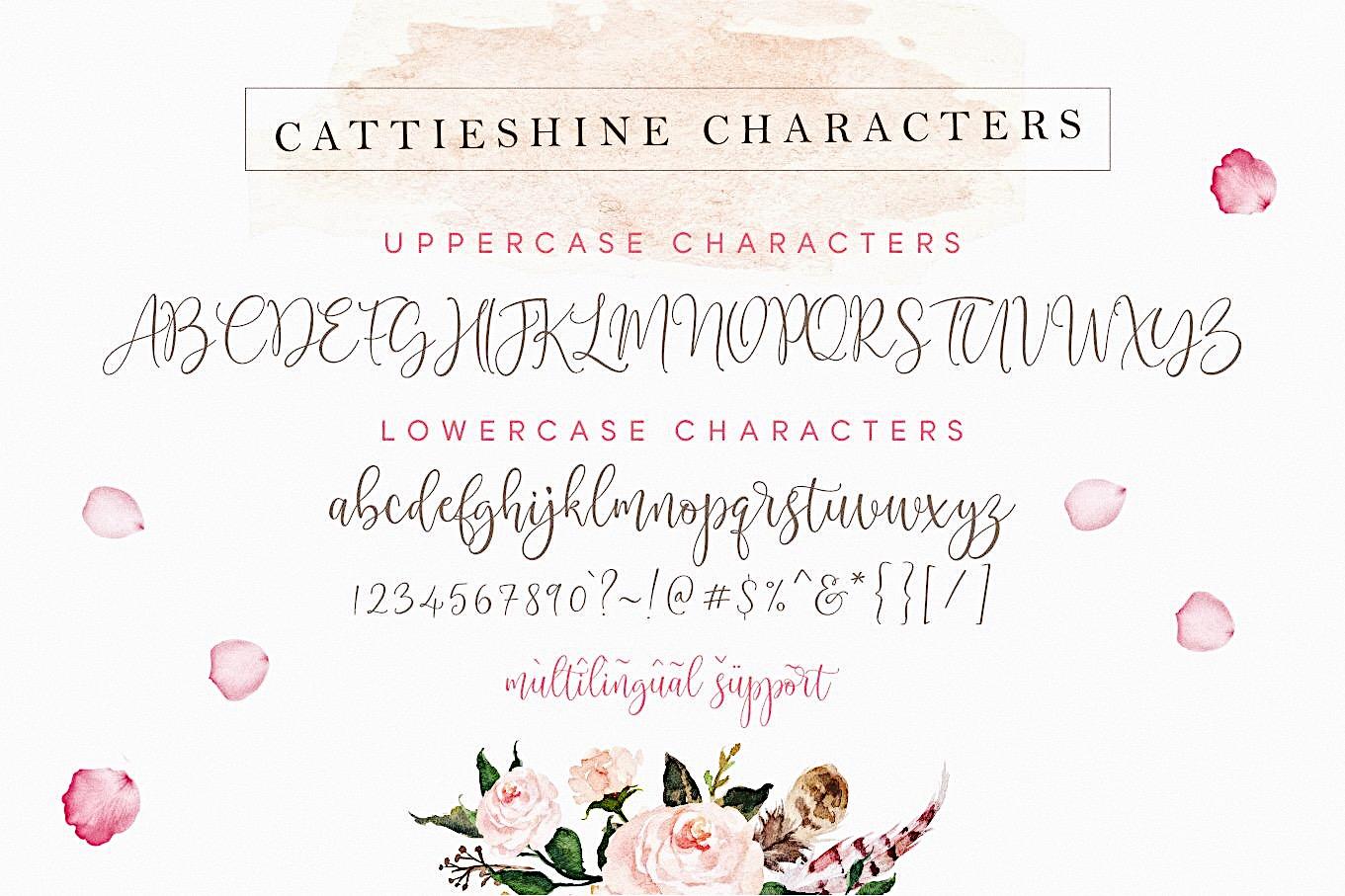 Cattieshine - Font Duo example image 21