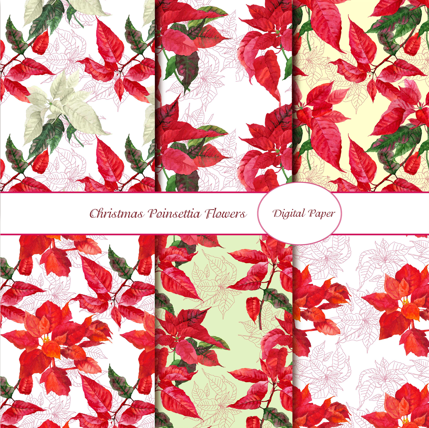 Digital Paper with Poinsettia example image 1