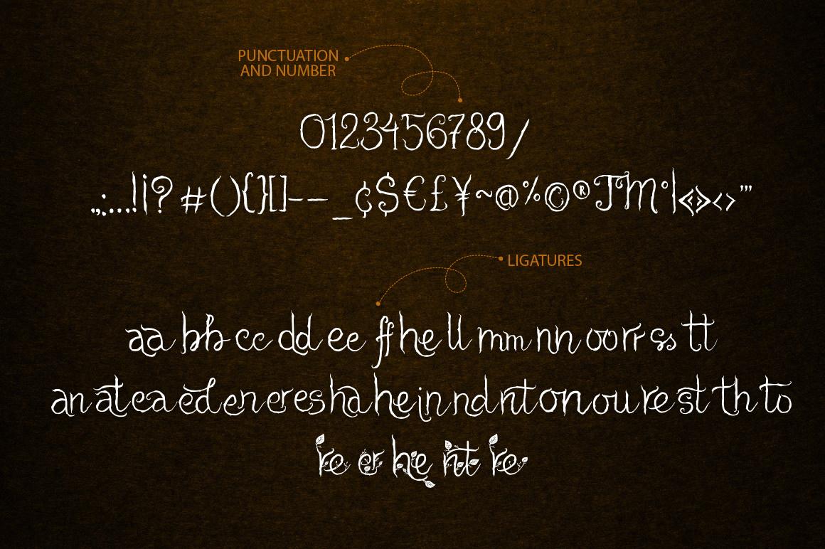 Cheshire. Magic script font. example image 4