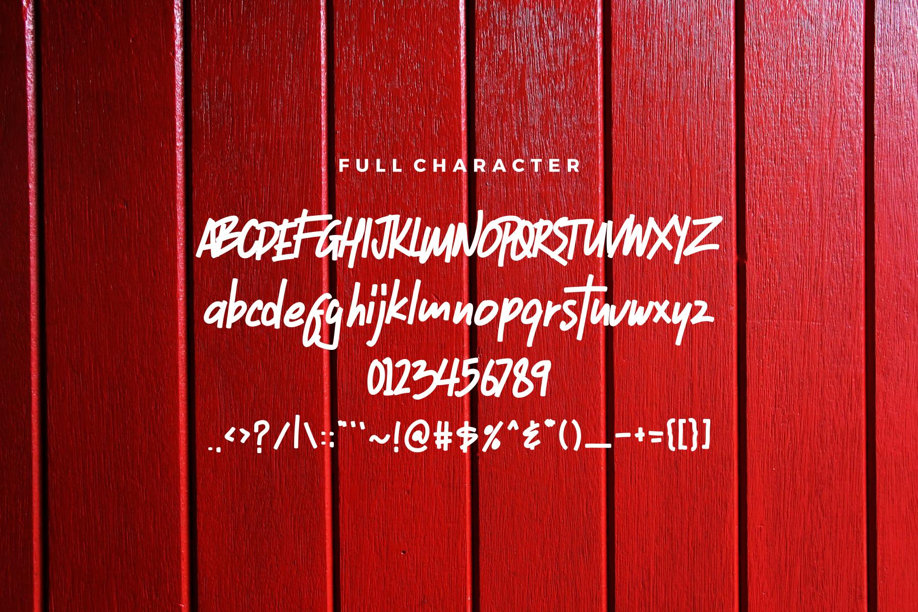 Ristic Script Font example image 2