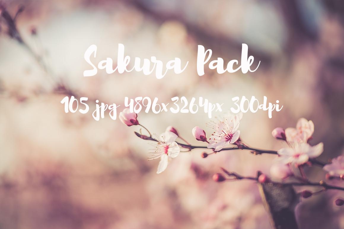 sakura photo pack example image 11