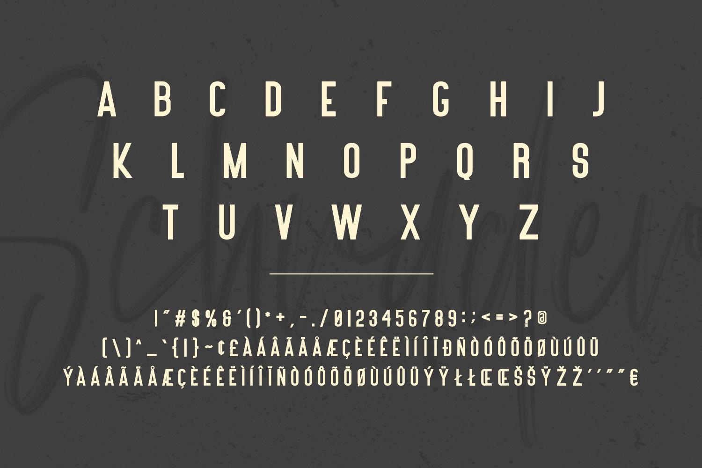 Schrader SVG Brush Font example image 10