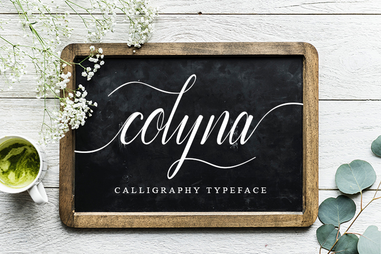 Colyna Script |Modern Calligraphy Typeface example image 2