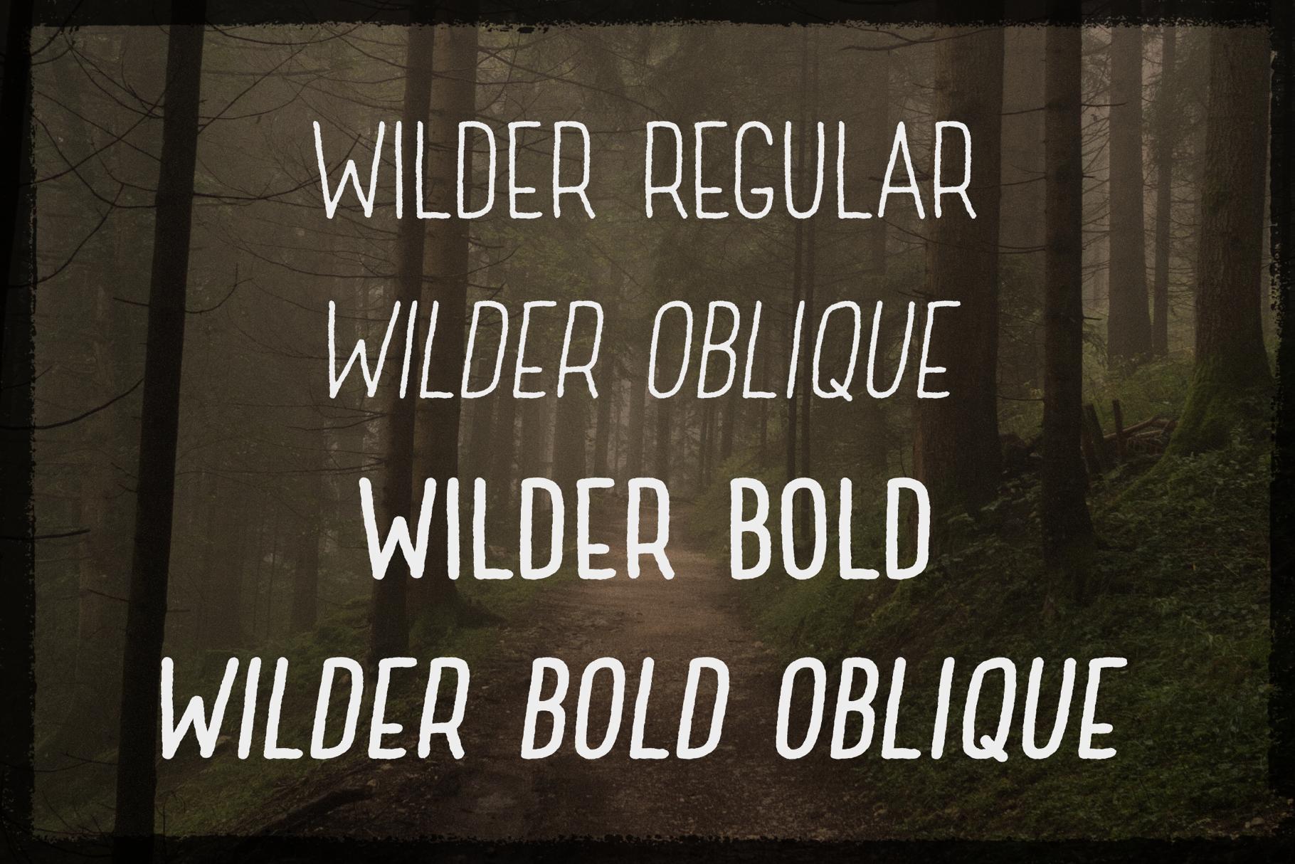 Wilder example image 4