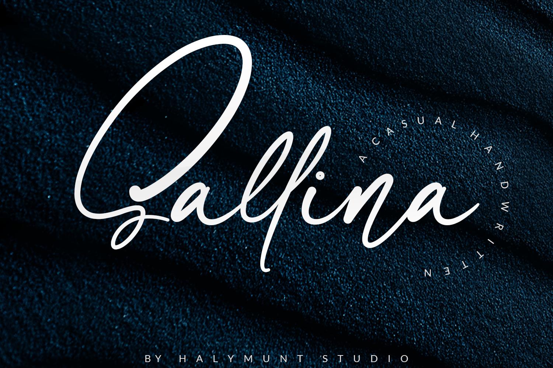 Sallina Script example image 1