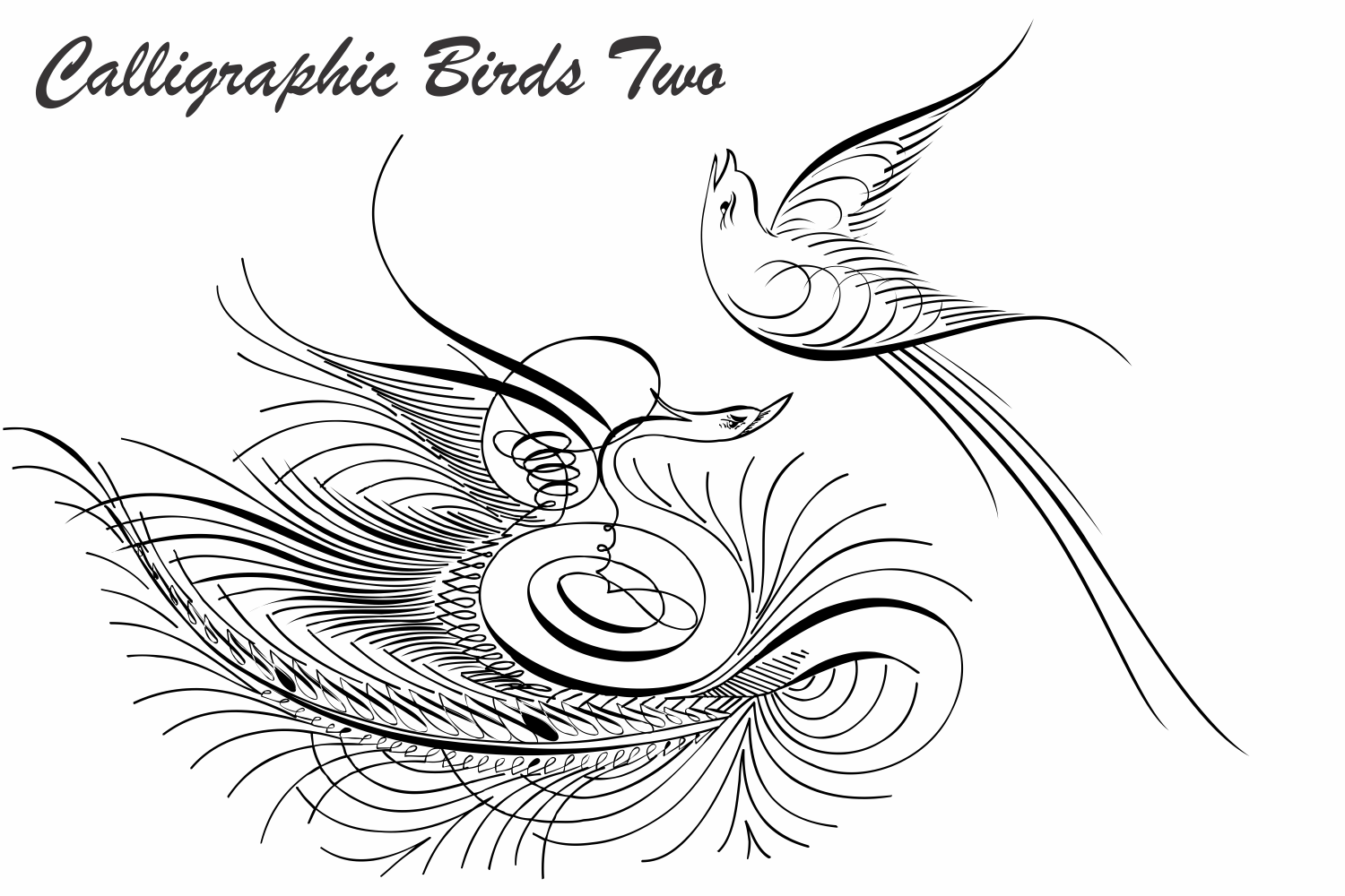 Calligraphic Birds Two example image 3